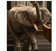 Elefante adulto - pelaje 16022