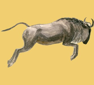 Acoger a un animal de la sabana de especie Ñu