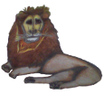León adulto - pelaje 1000000035