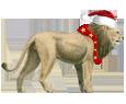 León - pelaje 117
