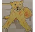 León adulto - pelaje 16023